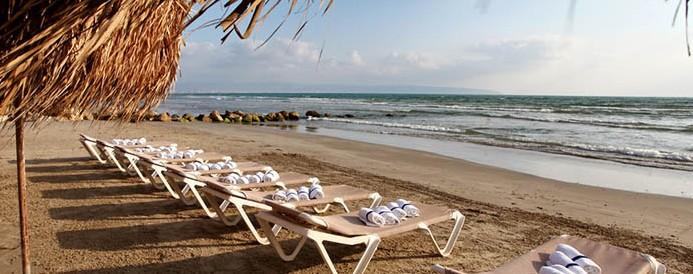 חוף התמרים-